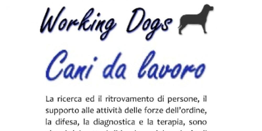 """""""Working Dogs"""", la mostra sui cani da lavoro"""